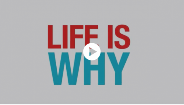 Life is Why Video